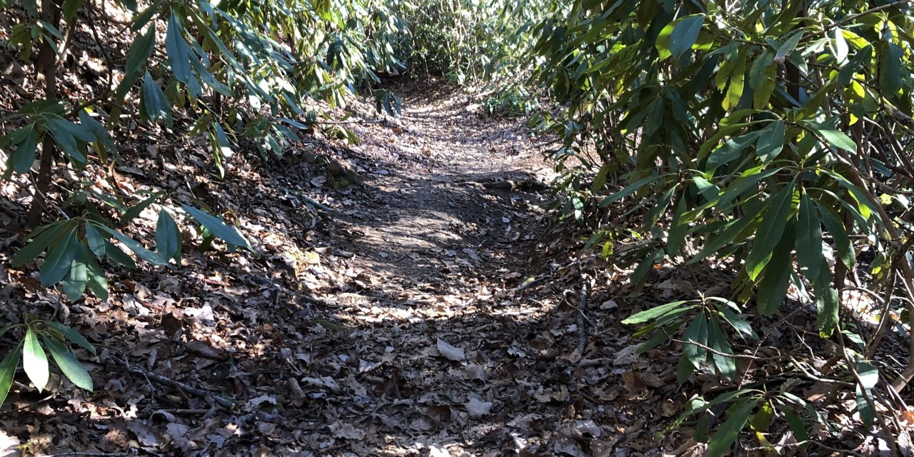 Finishing My Hike As I Started It – Alone