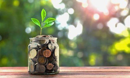 Score! Budget-Saving Deals
