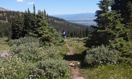 Planning and Prepping for a Colorado Trail Section Hike