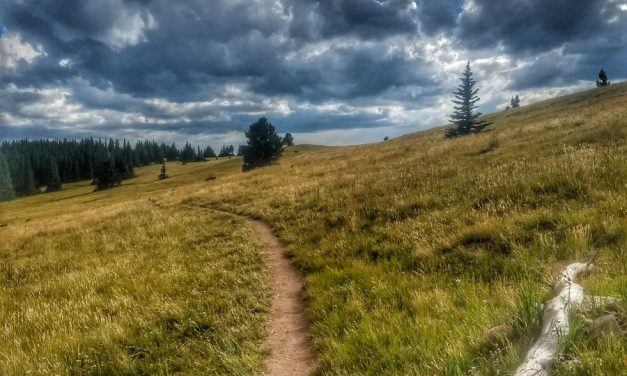 How Hiking Transformed my Body Image Issues