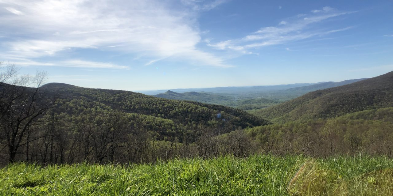 107.9 Miles Hiked in 7 Days… Regrets?