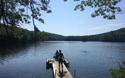 Week 19 on the AT: Upper Goose Pond, MA to Manchester, VT